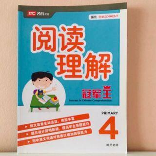 P4 Success In Chinese Comprehension