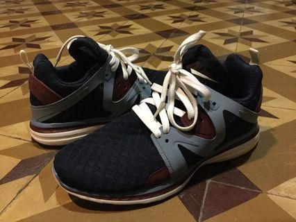 APL trainers