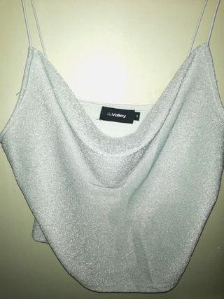 Silvery Tube Top