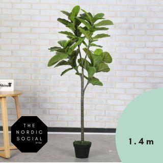 FREE DELIVERY 1.4/1.7m Banyan faux Artificial Plant