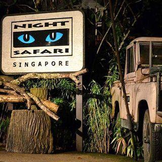 Night safari attraction tickets