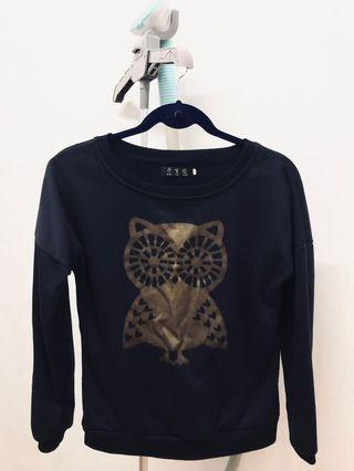 🚚 Owl Pullover