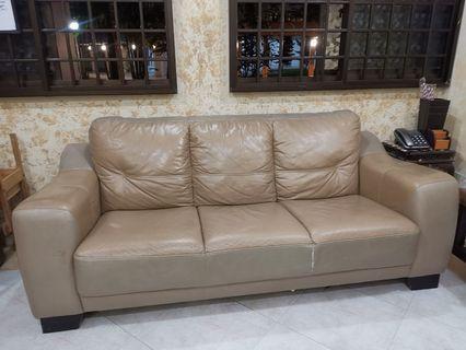 🚚 Leather Sofa