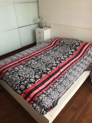 FREE: Double bed, beside table, shelf (no mattress)