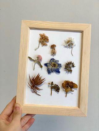 🚚 Plant Herbarium Frame