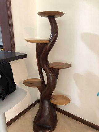🚚 Teal wood display unit
