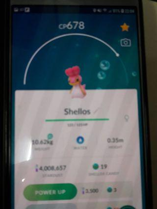Pokemon go Shellos that only can be found in us