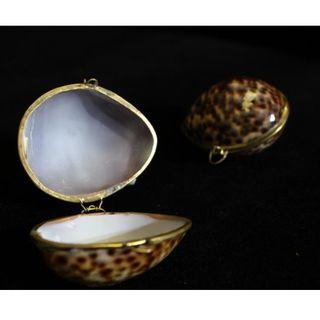 天然貝殼製收納盒 裝飾 手工 貝殼 博物館級展品