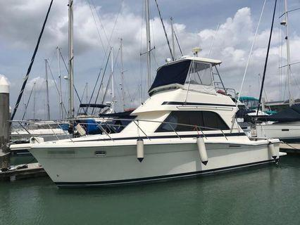 1996 Riviera pleasure craft boat yacht