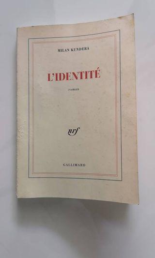 🚚 French Novel - Dai Sijie, Balzac et la Petite Tailleuse chinoise