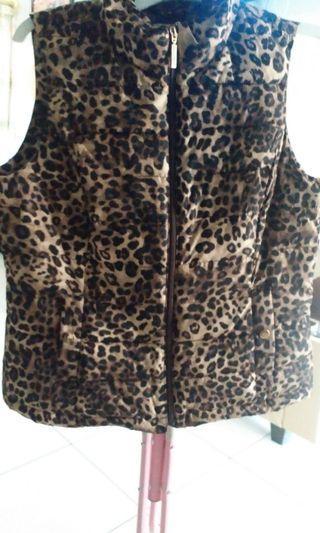Rompi Leopard