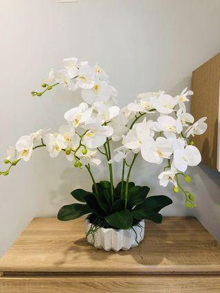 🚚 Artificial Orchid