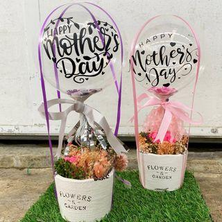 """Mother Day 2019_7"""" Customised Balloon in a pot (dried flower)"""