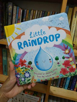 Boardbook Little Raindrop