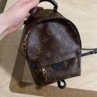 🚚 Louis Vuitton mini palm spring Backpack