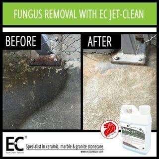 EC Jet-Clean Remover for Easy Fungus Fungi Algae Removal Cleaner