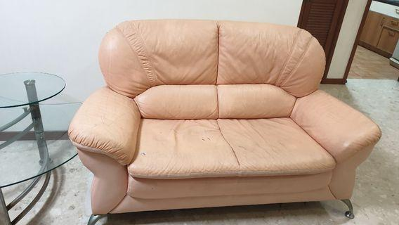 Two 2 seater sofa