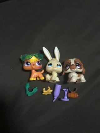 LPS (as pack)