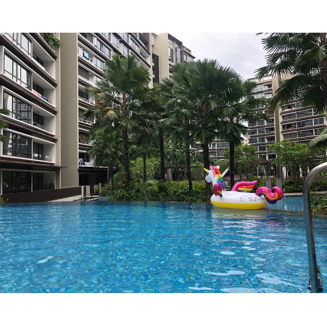 Room Rental - walking distance to Pasir RIs MRT