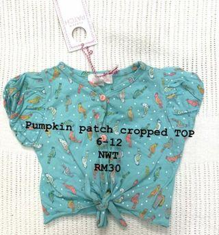 Pumpkin Patch top