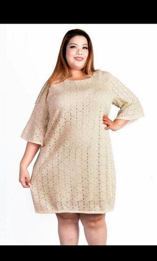 Kaylene Plus size Black lace bell sleeve dress