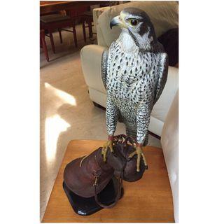 Falcon Sculpture - Unique