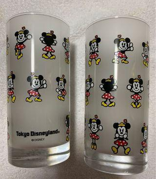 Disneyland Tokyo Frosted Glass Cup