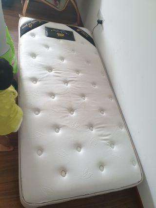🚚 single mattress max coil