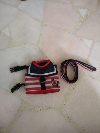 🚚 Nautical dog harness and leash