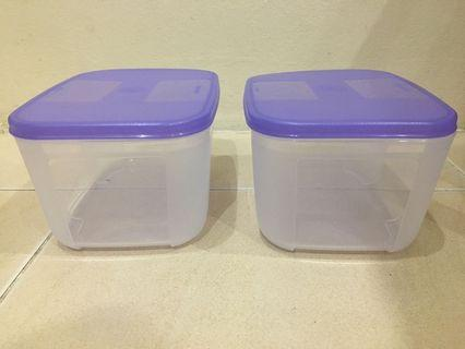 Tupperware Container FM Small x 2 -Berry Bliss