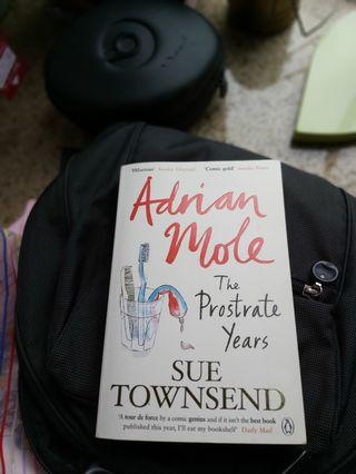 Adrian Mole the Prostrate years by Sue Townsend