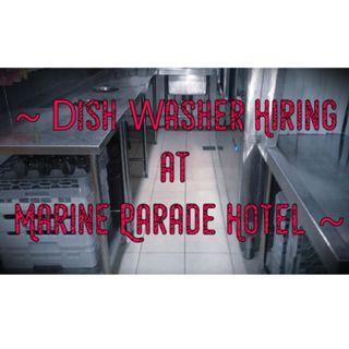 Marine Parade Ad Hoc Stewarding Required