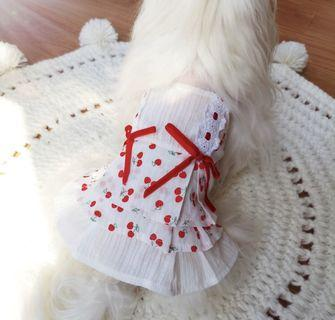 BN It's Summer! Sweet as Cherries Beautiful Pets Dress! For Dogs Cats Puppy Kittens