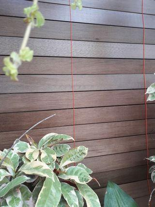 Krey kayu untuk jendela atau pintu