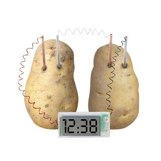 🚚 Potato Clock (Pre-Order ONLY)