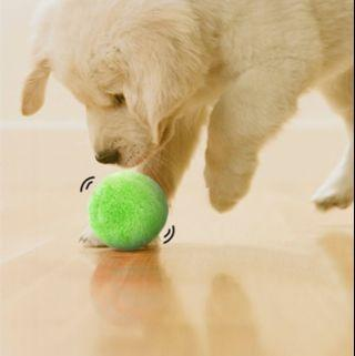 🚚 Active Fur Ball for Pets
