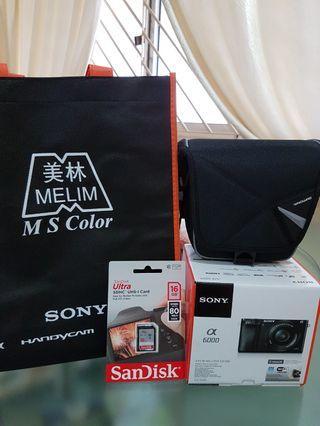 Sony a6000 @ 16-50mm lens