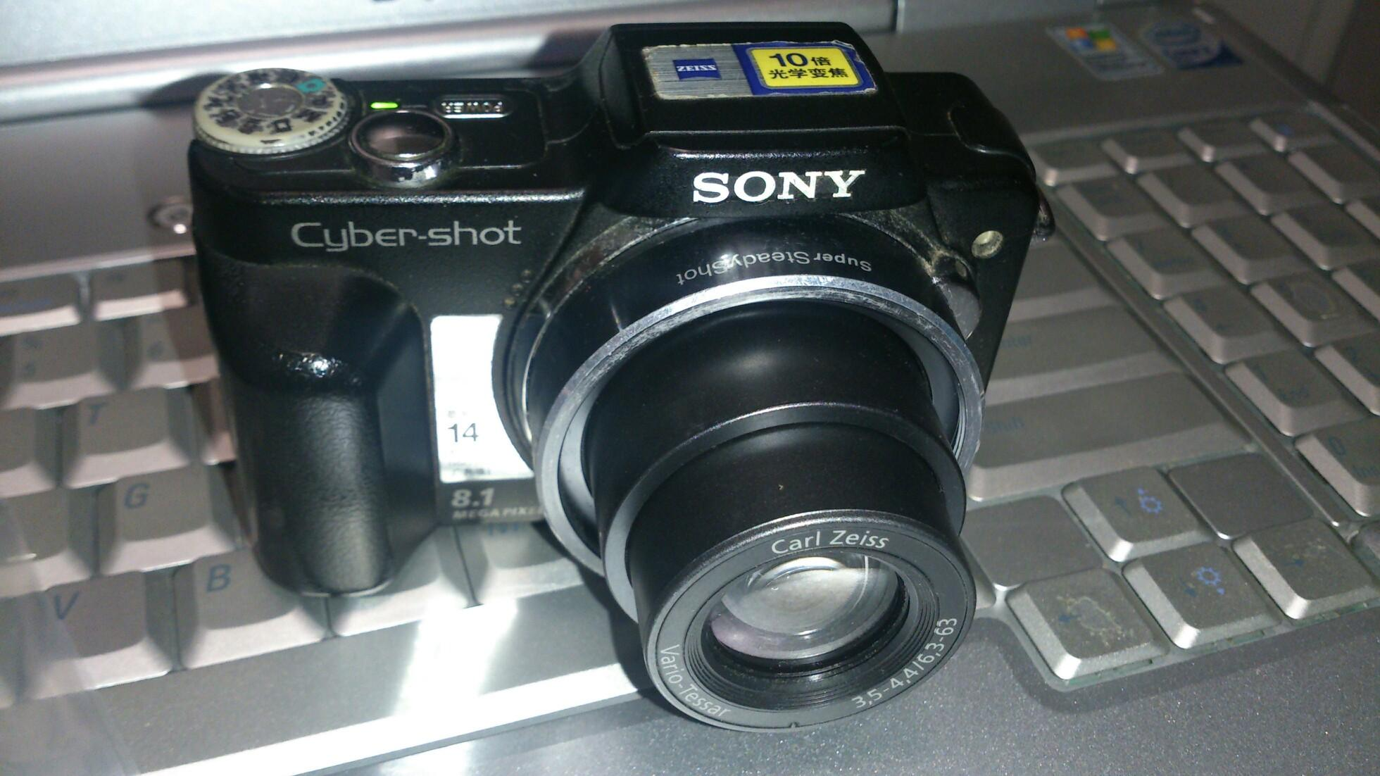 Sony camera H2, 10x optical zoom, zeiss lens.