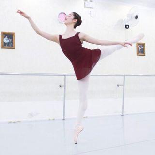 Ballet leotard + attached skirt