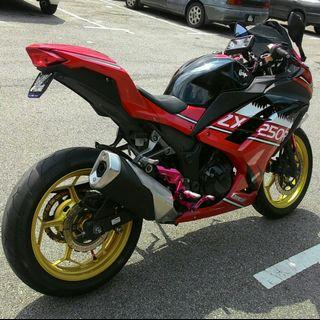 Kawasaki Ninja EX250L SE
