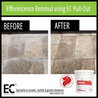 EC Pull-Out Organic Cleaner for light cement smears, excess grouting, efflorescence, limescale removal