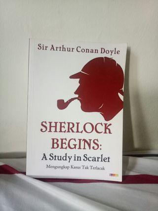 Sherlock Begins: A Study in Scarlet