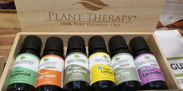 Plant therapy essential oils set of 6 in stock