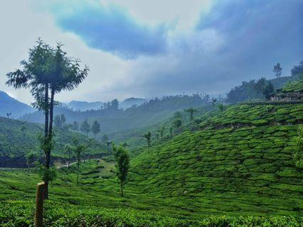 Hiker's Paradise! Western Ghats of India (4D/3N Holiday)