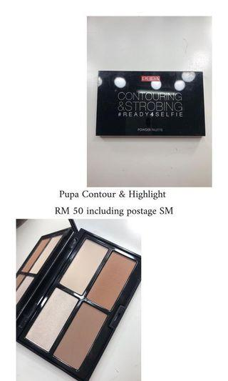 Pupa Contour and Highlight