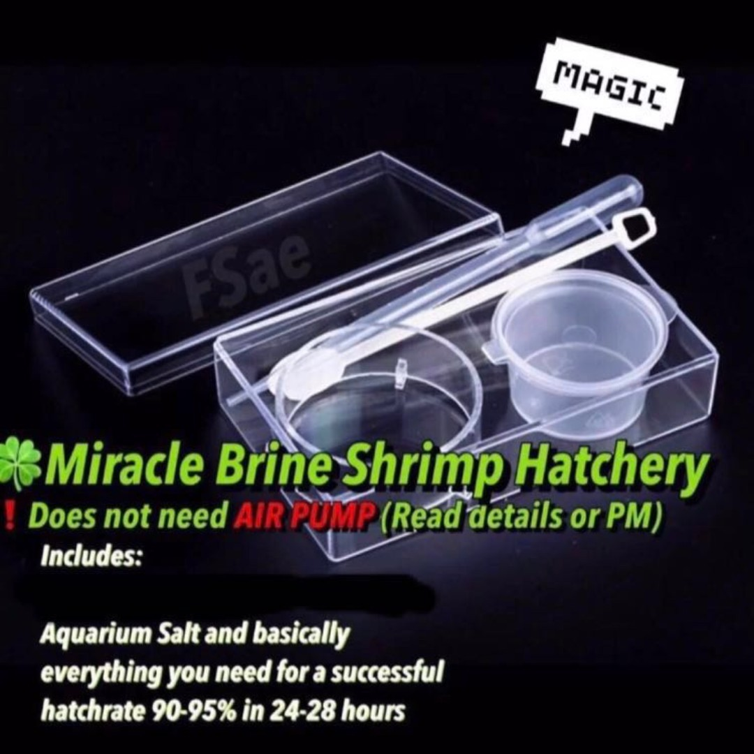 d8040baf4274aa 🍀 brine shrimp hatchery bbs baby sea monkey for fish fry Betta food all in  one. don't need air pump read detail!, Pet Supplies, For Fish, ...