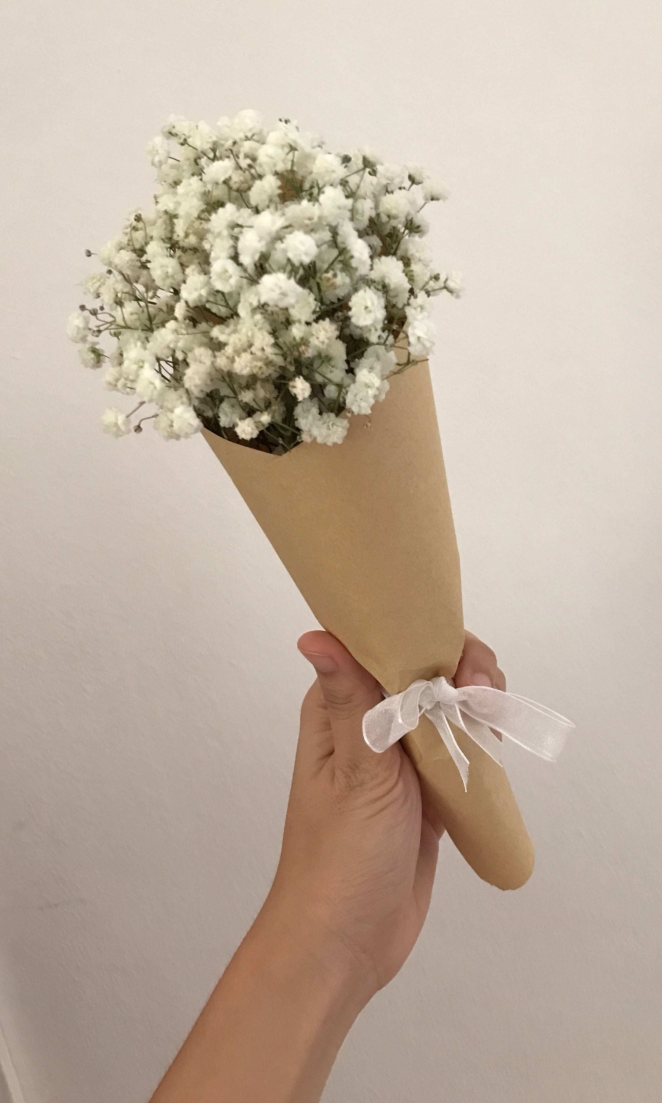 Baby Breath Popcone Gardening Flowers Bouquets On Carousell