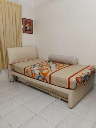 Beautiful Fully Furnished Room For Rental