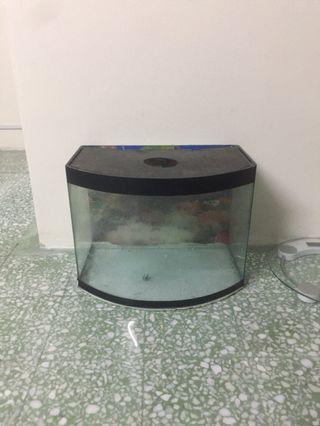 Aquarium Kaca Tebal