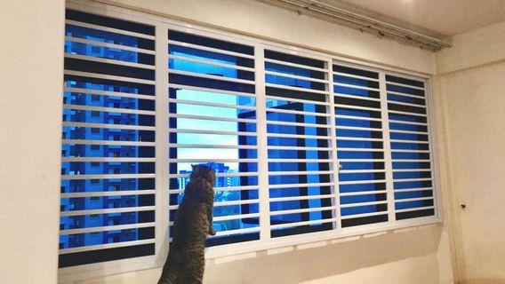 Cat safety grilles installation ( Direct )